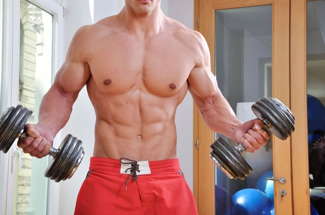 How to gain Muscle Mass & Size