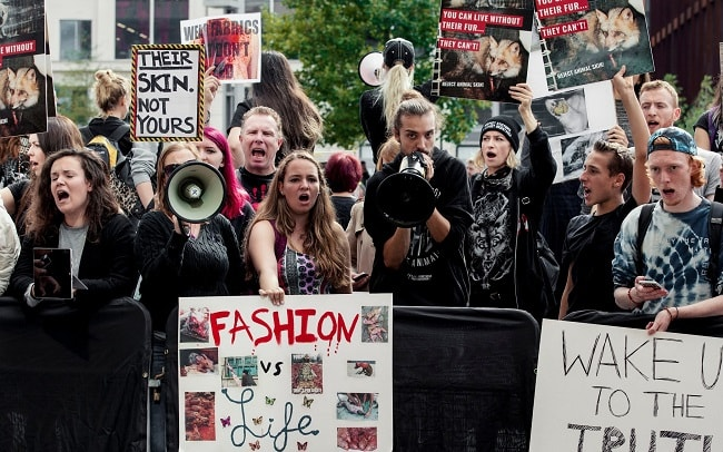 The Rise of the Fur-Free Movement
