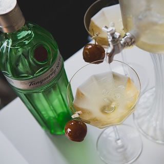 Tanqueray No TEN at The World Class House